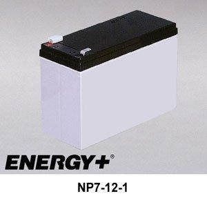 FedCo Batteries Compatible with EnerSys NP7-12-1 7000mAh Sealed Lead Acid Battery For Standby And Main Power Applications