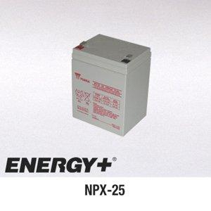 FedCo Batteries Compatible with Yuasa Genesis NPX-25 5000mAh Sealed Lead Acid Battery For Standby And Main Power Applications